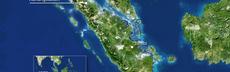 Orang utan auffangstation %280.00.00.00%29neu