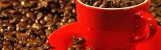 Bohnen in roter tasse