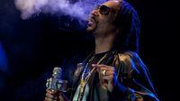 Snoop schnitt