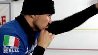 Boxer bild02