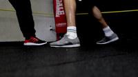 Boxer bild16