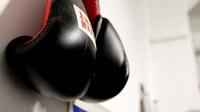 Boxer bild25
