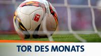 Tor des monats 2014 16zu9