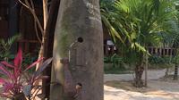 Laos reise traustdudich 220 original