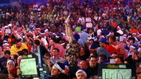 Darts fans